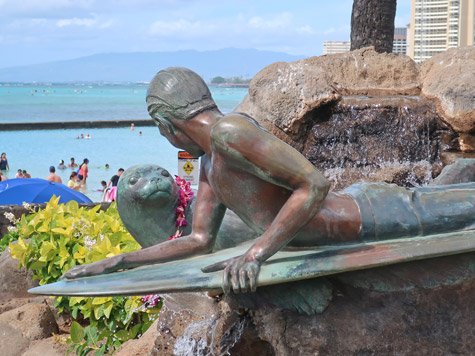 Surfer Boy and the Seal in Waikiki Hawaii